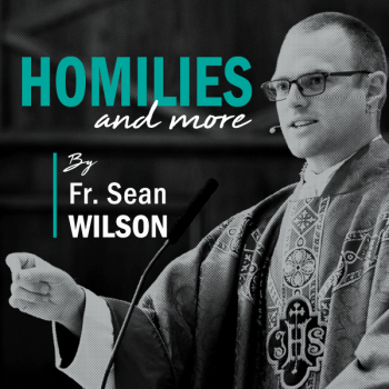 Homilies&More